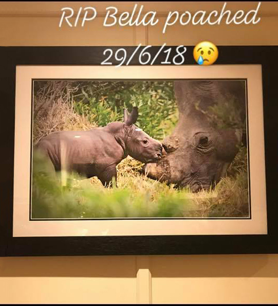 Anti Poaching Unit Raffle Fundraiser