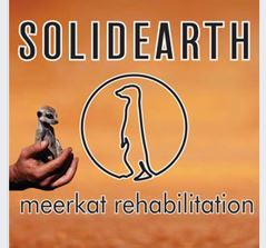 Solidearth Meerkat Rehabilitation