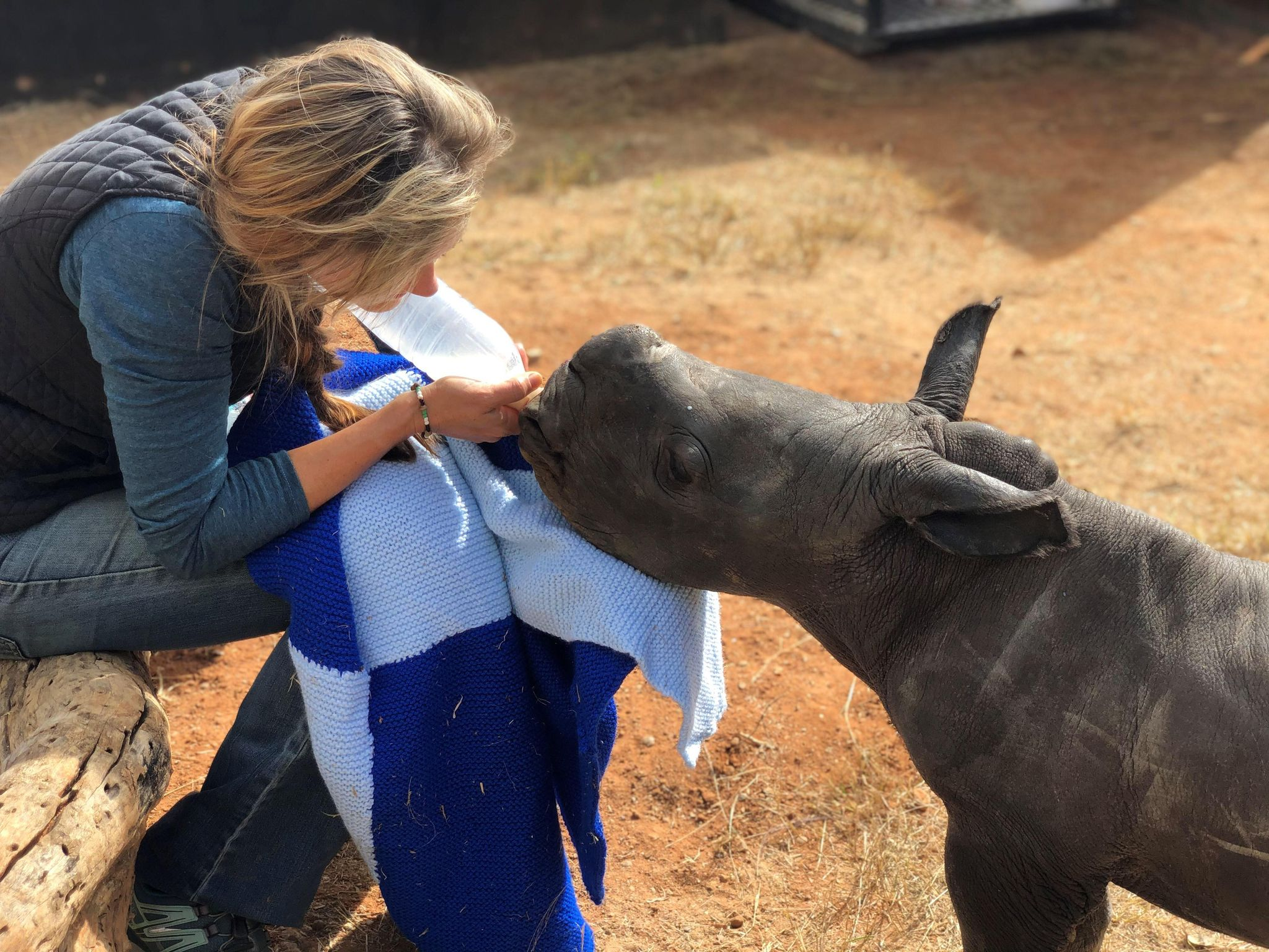 Read more about the article MILK FOR THE RHINOS!
