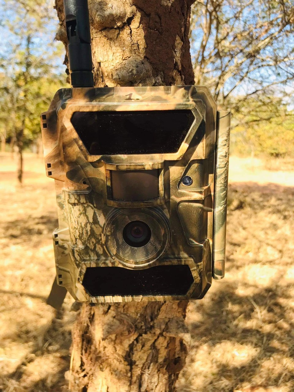 Read more about the article Camera traps for a new beneficiary